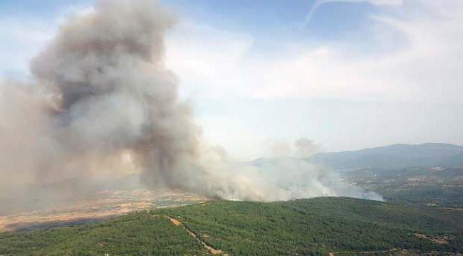 Muğla'daki orman yangını havadan ve karadan müdahaleye rağmen büyüyor